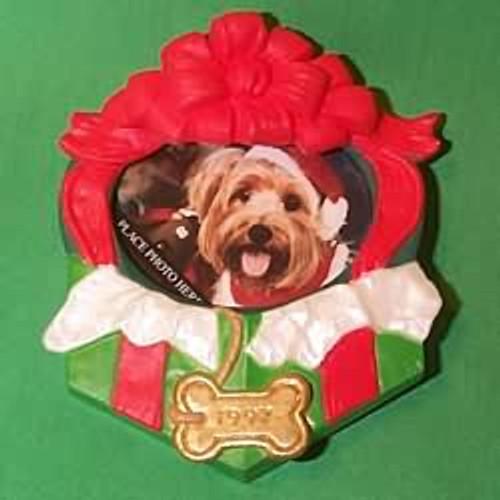 1997 Special Dog
