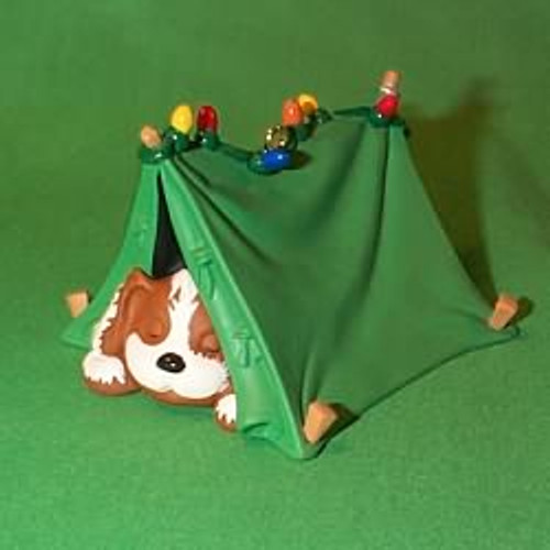 1996 Pup-Tenting