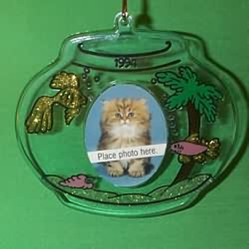 1994 Special Cat - Photo