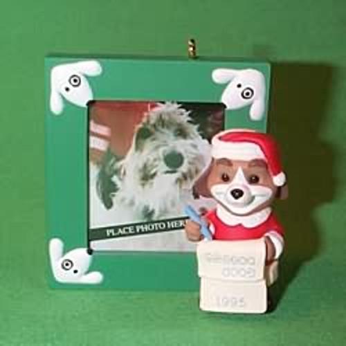 1995 Special Dog