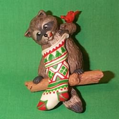 1982 Raccoon Surprises