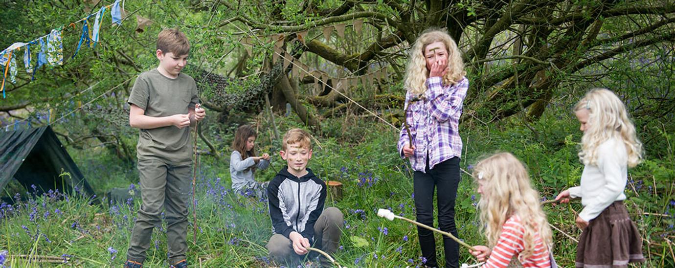 Woodland Exploration