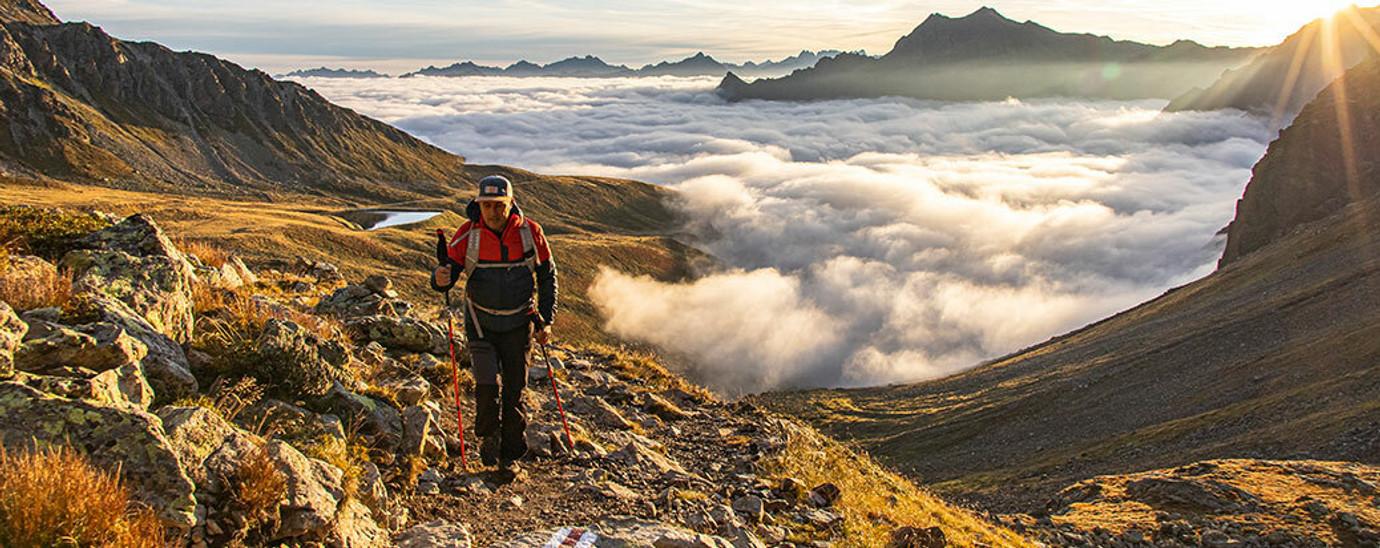 Walking & Trekking Poles