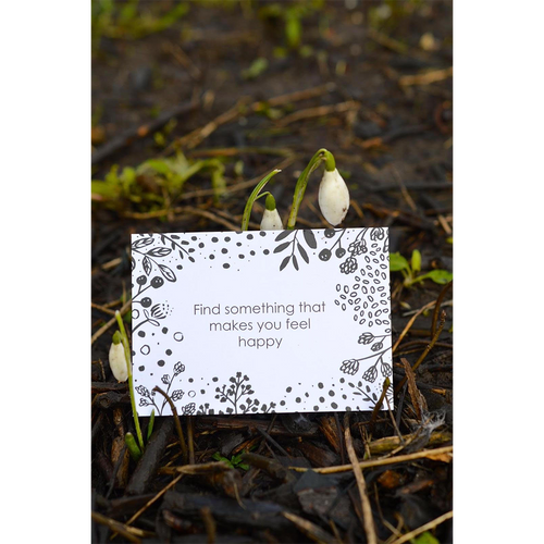 Mindful Nature Walk Cards
