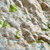 Dorrigo 3D Map of Dartmoor National Park