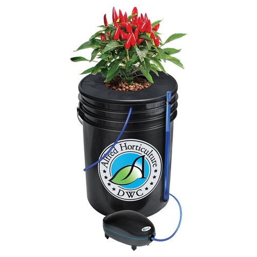 Deep Water Culture System - 1 plant