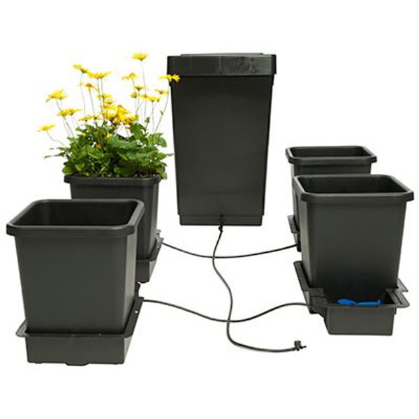 Automatic watering system for Plants Auto pot