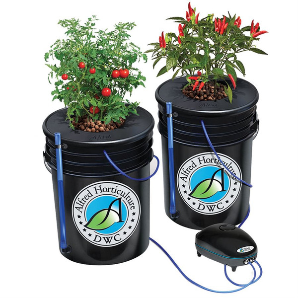Deep Water Culture System - 2 plant