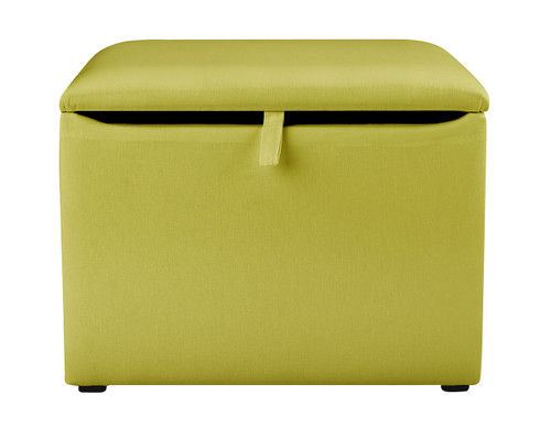 Green Toy Box
