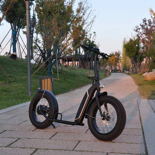 NEW! 2020 500W DGW Brushless with gear(Shengyi) Electric Bike Fat Bike 7 Speed****FREE SHIPPING USA****