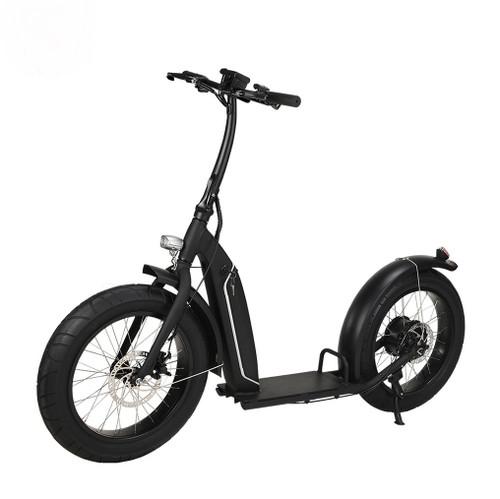NEW! 2020 500W DGW Brushless with gear(Shengyi) Electric Bike Fat Bike 7 Speed****FREE SHIPPING USA****