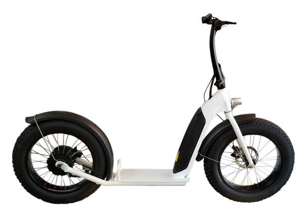 NEW! 2020 500W DGW Brushless with gear(Shengyi) Electric Bike Fat Bike 7 Speed(White)****FREE SHIPPING USA****