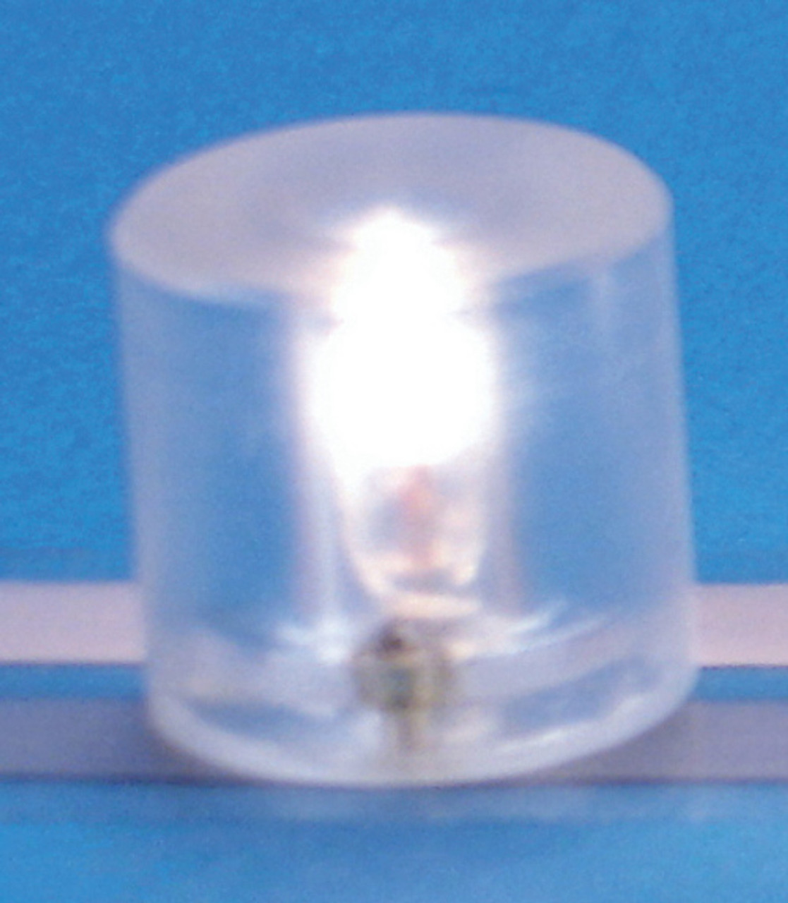 12 Volts Large Pin-In Ceiling Globe