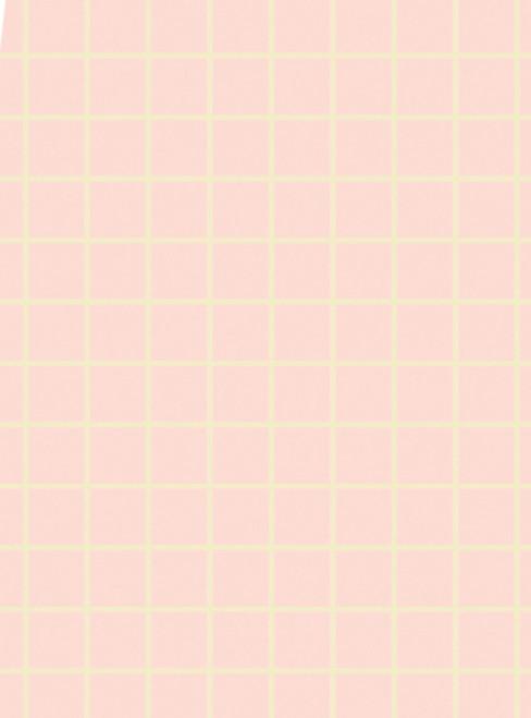 No Wax Flooring - Pink Check