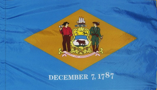 Delaware - State Flag with Pole Sleeve - For Indoor Use
