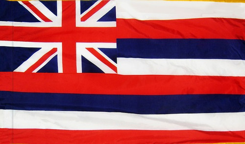 Hawaii - State Flag with Pole Sleeve - For Indoor Use