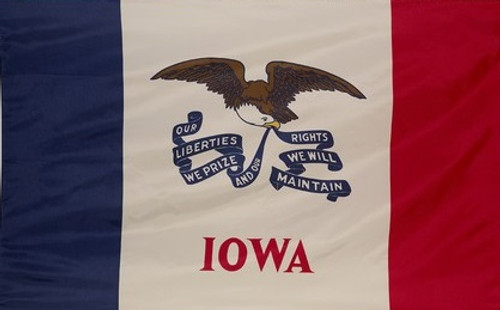Iowa - State Flag with Pole Sleeve - For Indoor Use