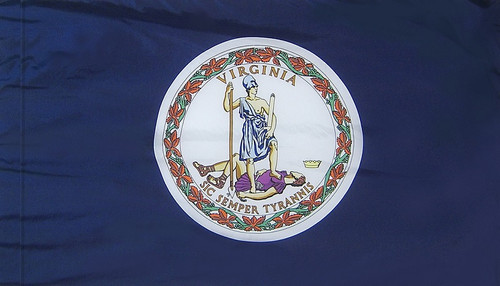 Virginia - State Flag with Pole Sleeve - For Indoor Use