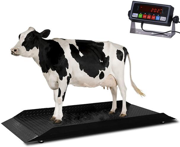 "PS-4KCS 3' x 7' x 4""  4000 lbs x 0.5 lbs Livestock / Animal / Cattle Alleyway Scale"