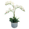 Real Touch Phalaenopsis Pot 30.5""