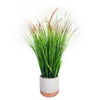 Onion Grass Pot 25""