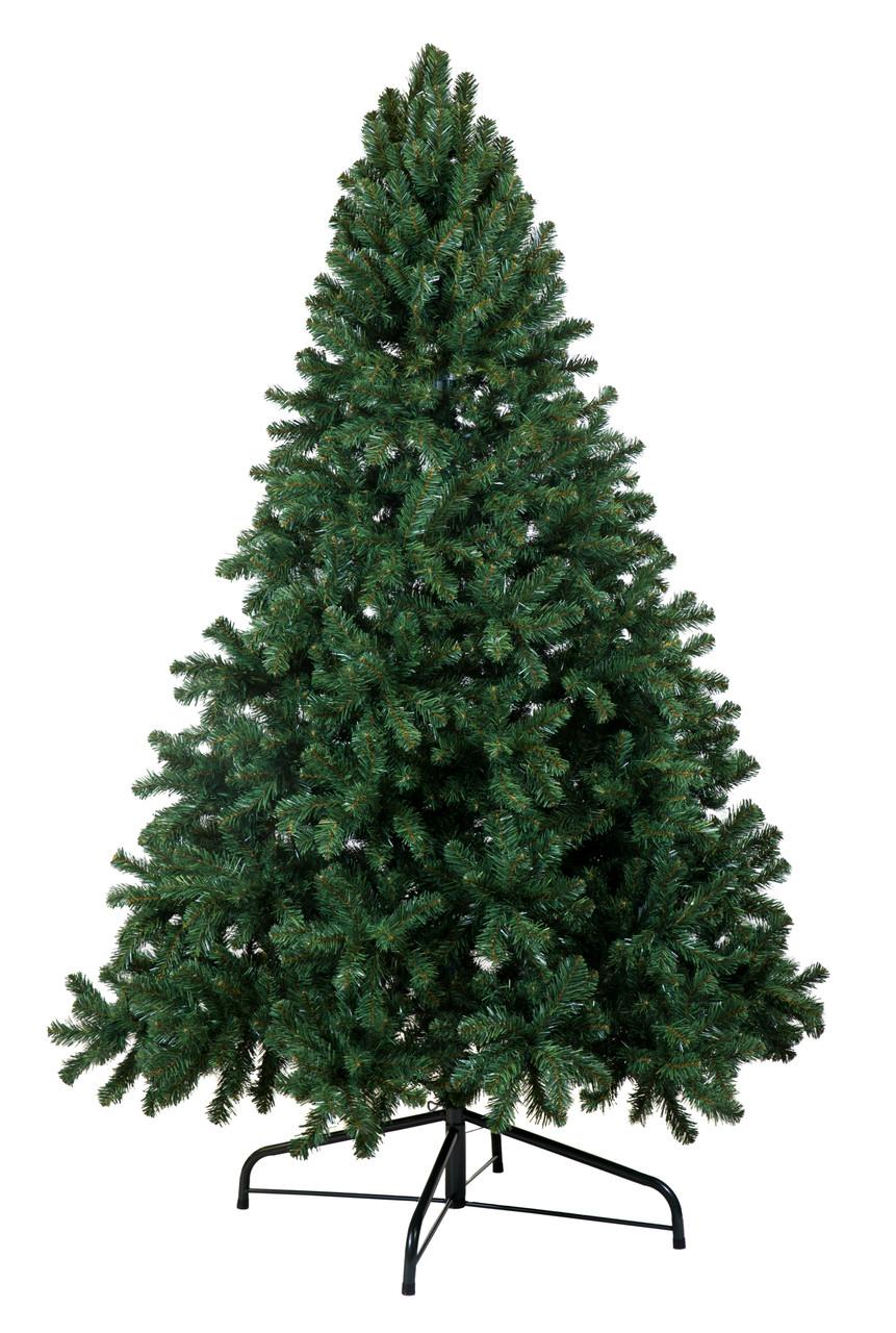 Douglas Fir Christmas Tree.9 Douglas Fir Hook Tree Unlit