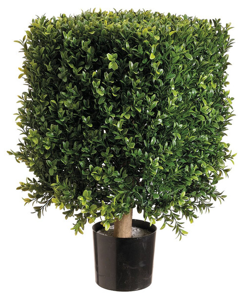 """21"""" Square Boxwood Topiary in Plastic Two Tone Green Pair"""