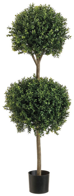 4ft Double Ball Shape Boxwood Topiary in Plastic Pot