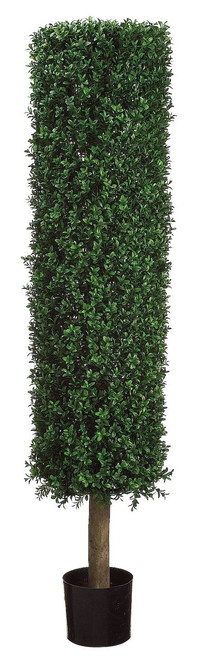 4.5ft Round Boxwood Topiary in Plastic Pot