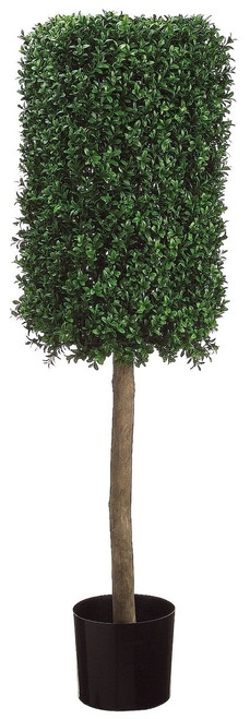 "50"" Rectangular Boxwood Topiary in Plastic Pot"