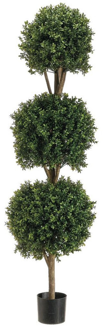 5ft Triple Ball Shape Boxwood Topiary in Plastic Pot