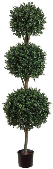 6ft Triple Ball Shape Boxwood Topiary in Plastic Pot