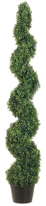 5' Knock-Down Pond Boxwood Spiral Topiary in Plastic Pot