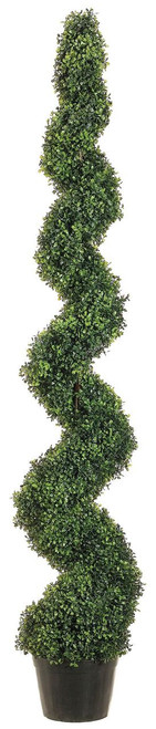 6ft Knock-Down Pond Boxwood Spiral Topiary in Plastic Pot Green