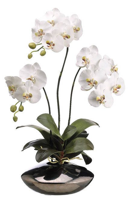 "31"" Phalaenopsis Orchid Plant in Ceramic Pot White"