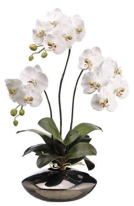 "31"" Phalaenopsis Orchid Plant in Ceramic Pot White"