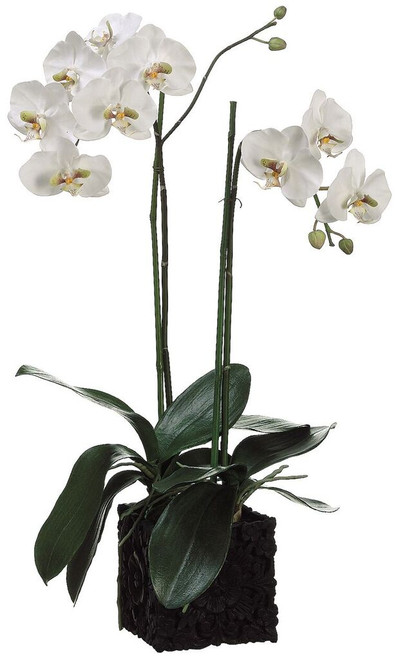 """31"""" Phalaenopsis Orchid Plant in Polyresin Container White Green"""