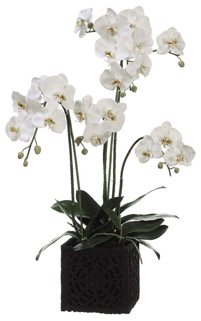 """37"""" Phalaenopsis Orchid Plant in Polyresin Container White Green"""