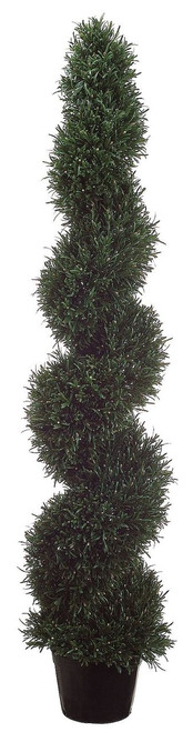 5ft Rosemary Spiral Topiary in Plastic Pot Green