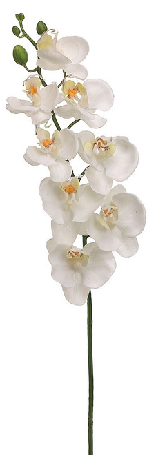 "26"" Phalaenopsis Orchid Spray White Box of 12"