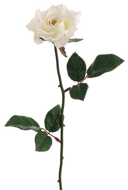 "23"" Single Medium Rose Spray x 1 Cream Box of 12"