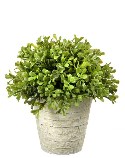 Spring Artificial Boxwood Dome Topiary 8""