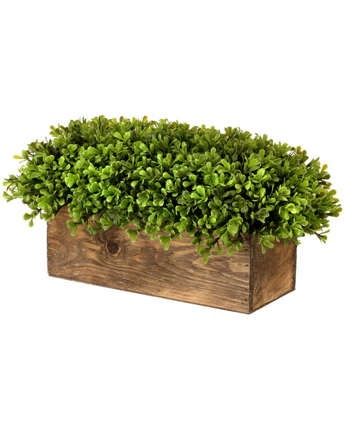 Spring Artificial Boxwood Rectangular Centerpiece in Wood 15""