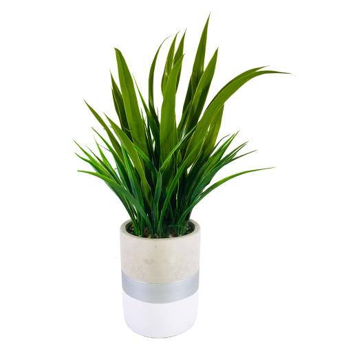 """Grass Pot 13.5""""H"""