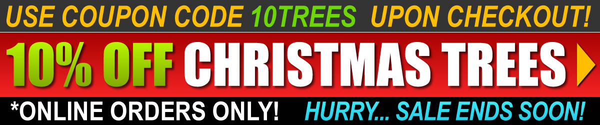 Best Christmas Tree Sale