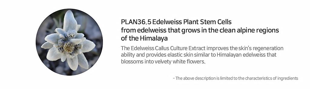 plan365-aloevera-soothing-gel-description-4.jpg