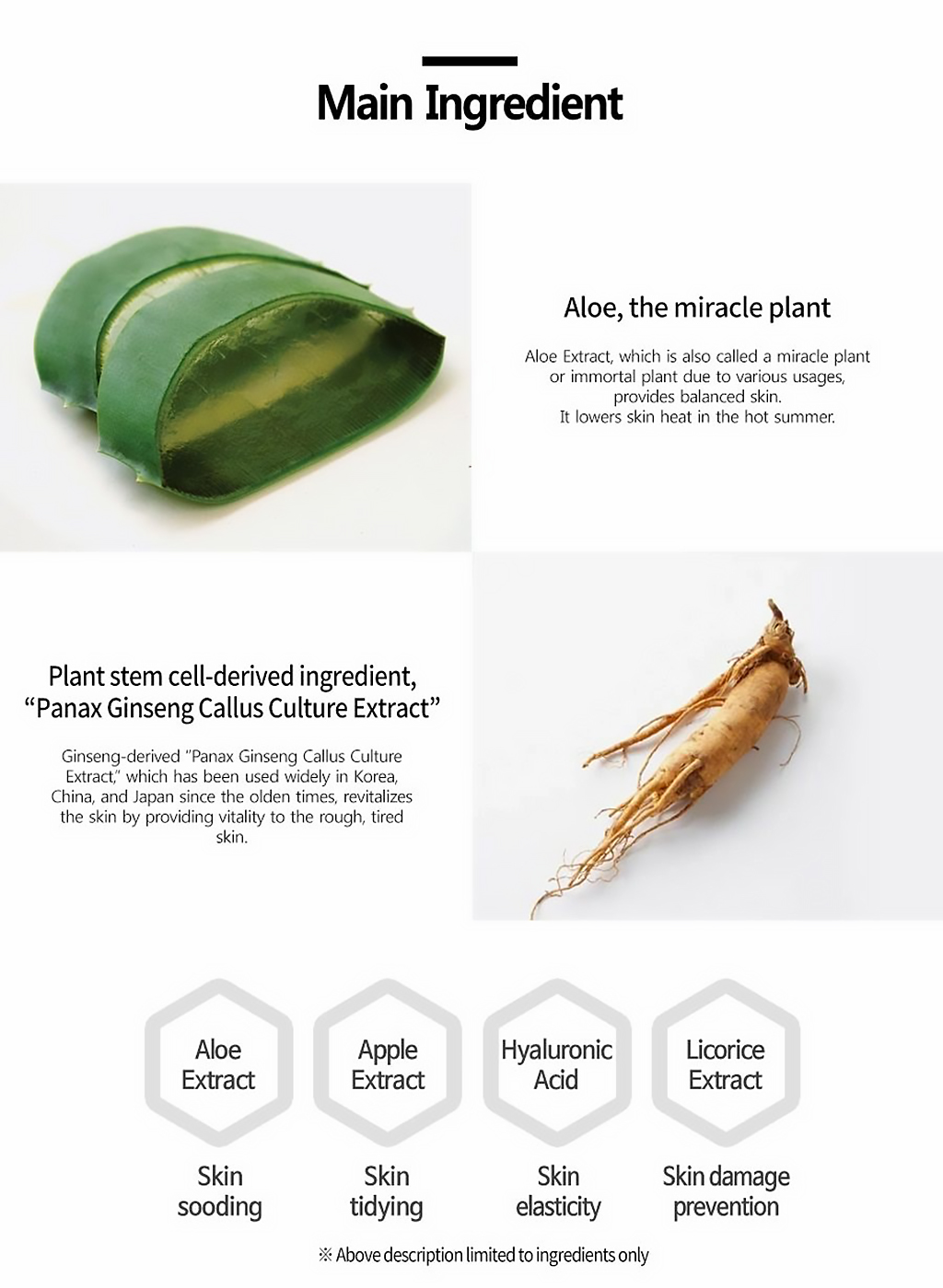 plan365-dailymask-aloevera-description-3.jpeg
