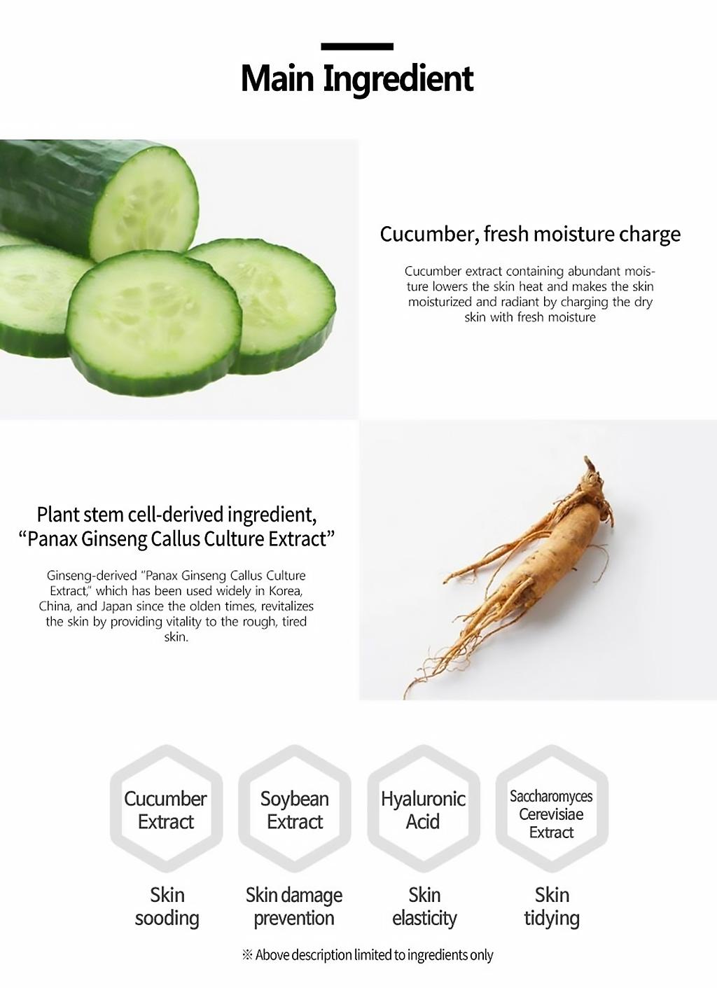 plan365-dailymask-cucumber-description-3.jpeg