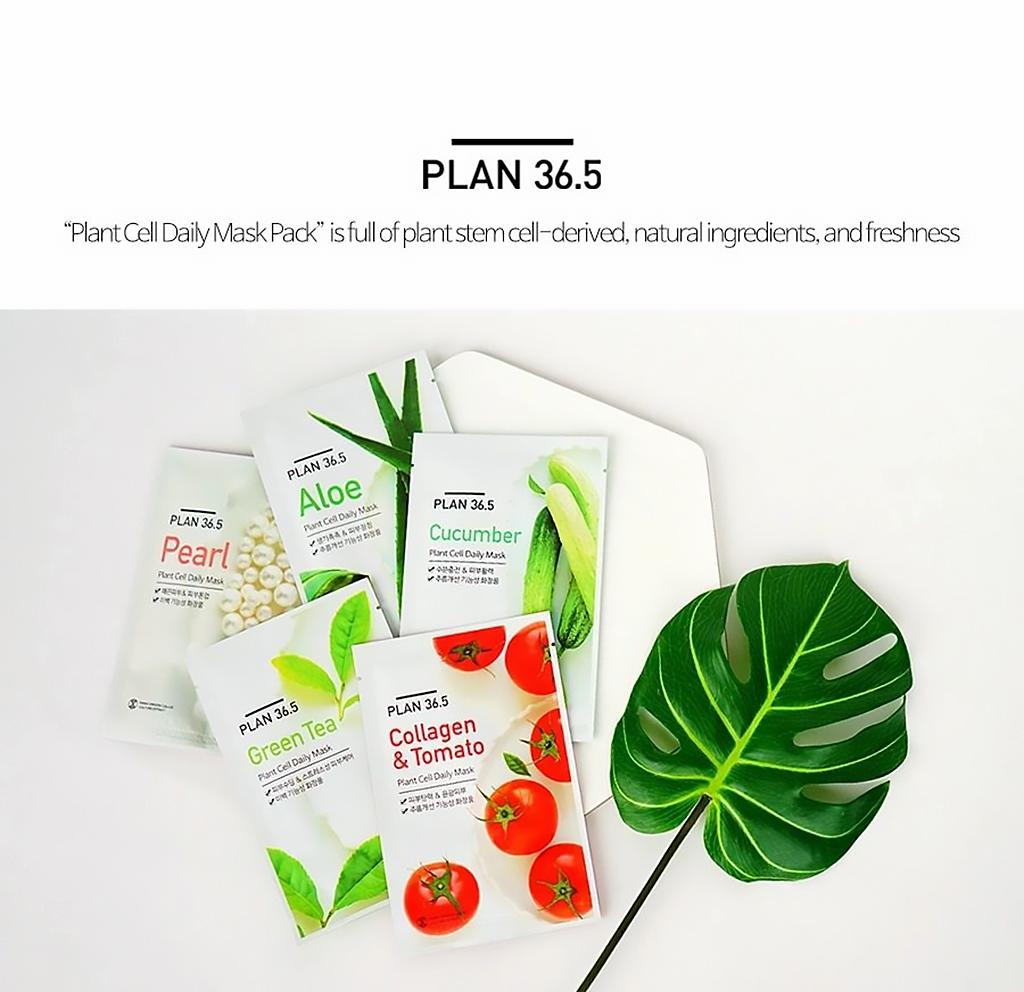 plan365-dailymask-general-1.jpeg