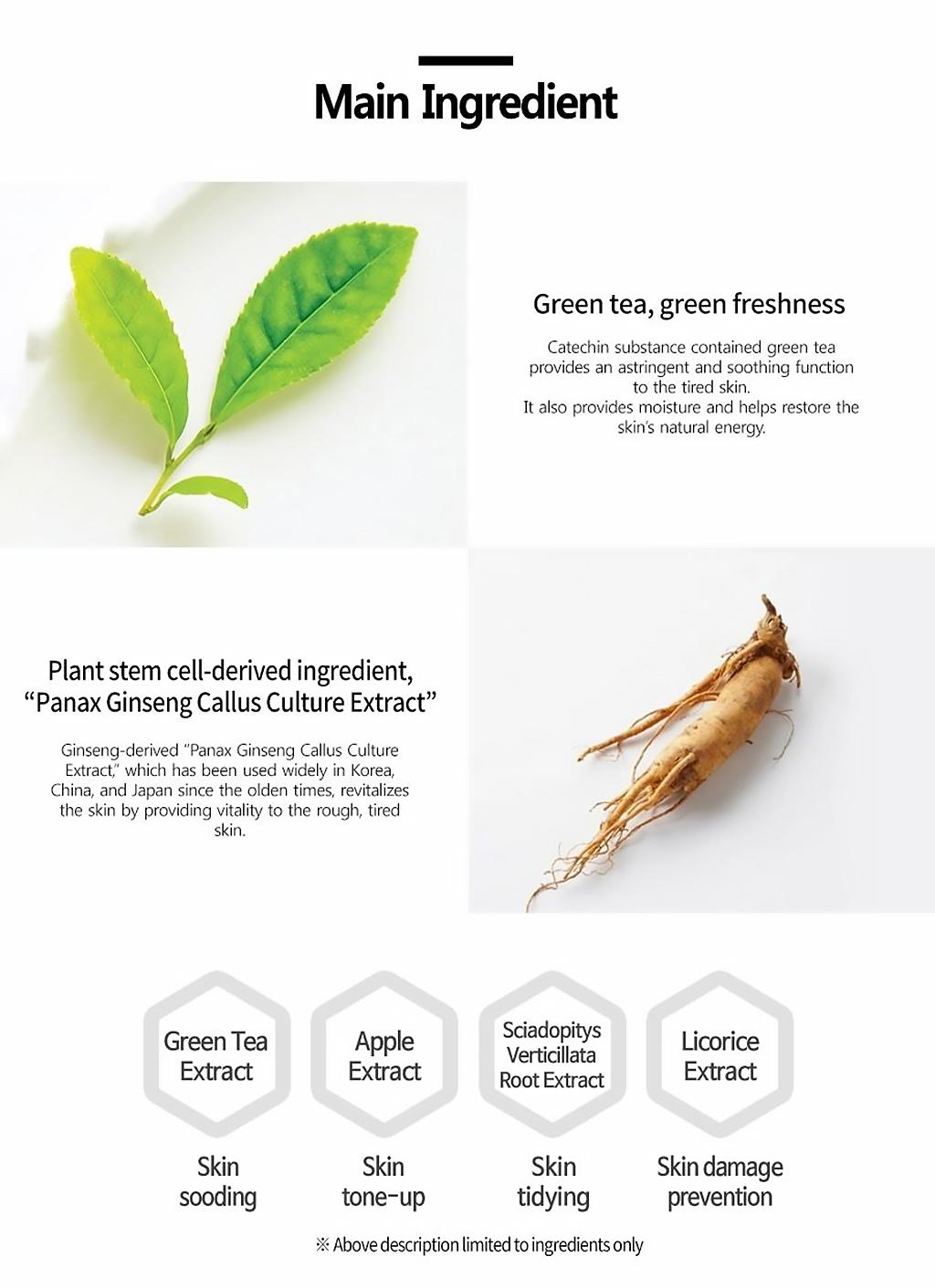 plan365-dailymask-greentea-description-3.jpg